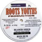 Blood Shed / Guiding Light