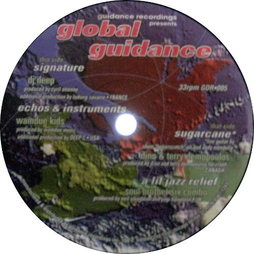 Global Guidance