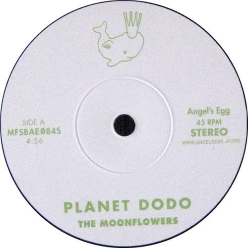 Planet Dodo / Tighten Up