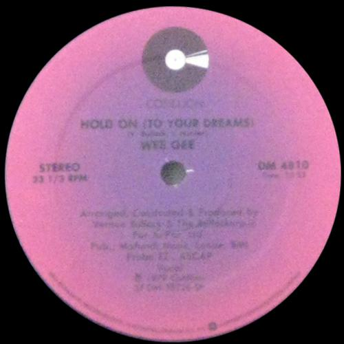 Hold On (To Your Dreams)