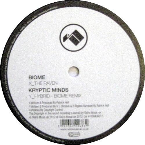 The Raven / Hybrid (Biome Remix)