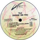 Diggin' On You